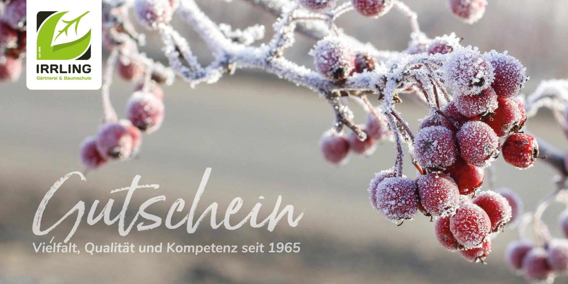 Gutschein Layout Winter